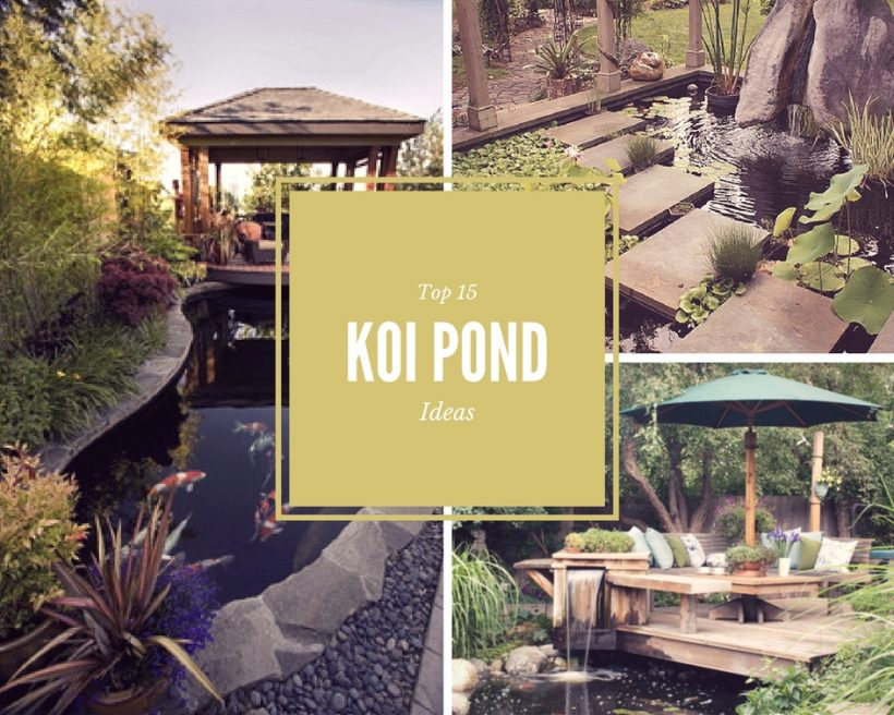 15 Japanese Koi Ponds For Your Garden